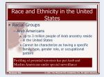 race and ethnicity in the united states31