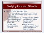 studying race and ethnicity17