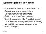 typical mitigation of erp issues