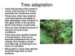 tree adaptation5