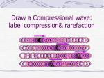 draw a compressional wave label compression rarefaction