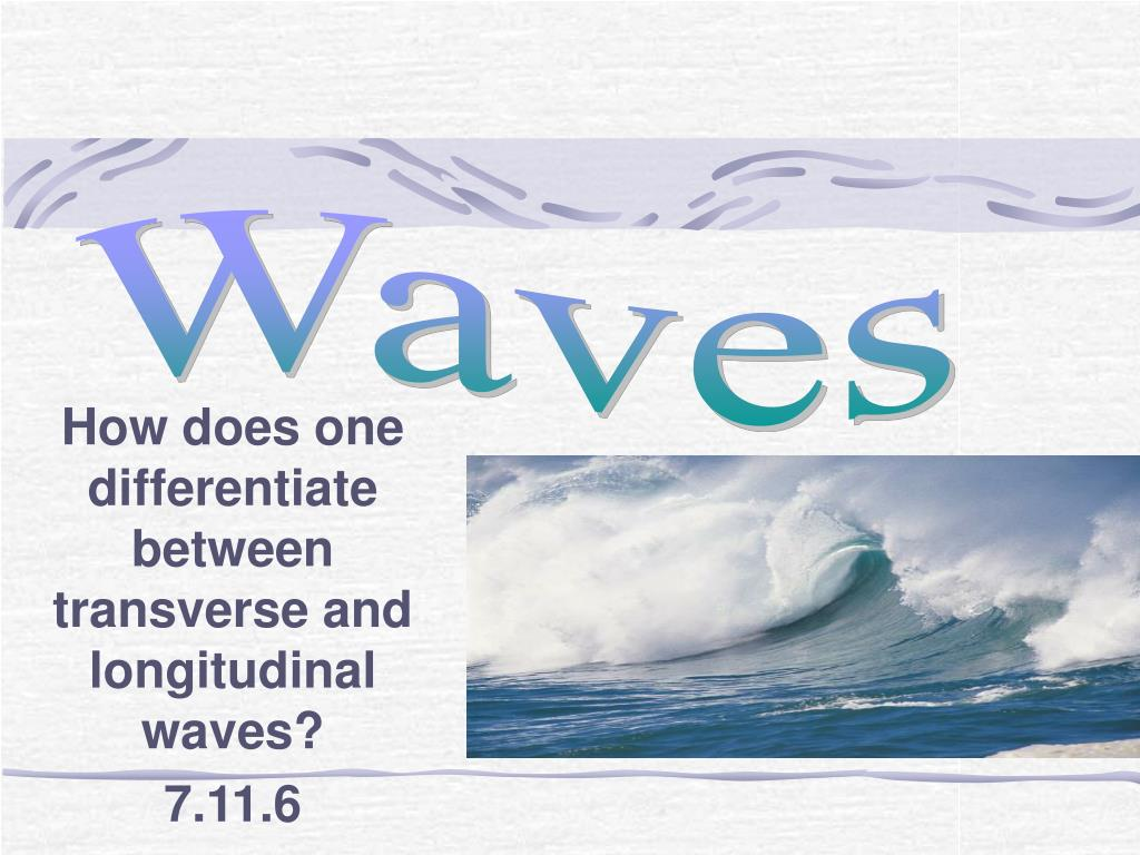 how does one differentiate between transverse and longitudinal waves 7 11 6 l.