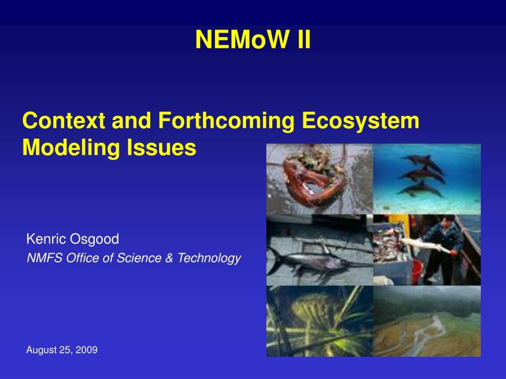 context and forthcoming ecosystem modeling issues l.