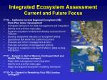 integrated ecosystem assessment current and future focus
