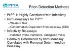 prion detection methods
