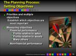 the planning process setting objectives