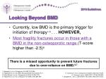 looking beyond bmd