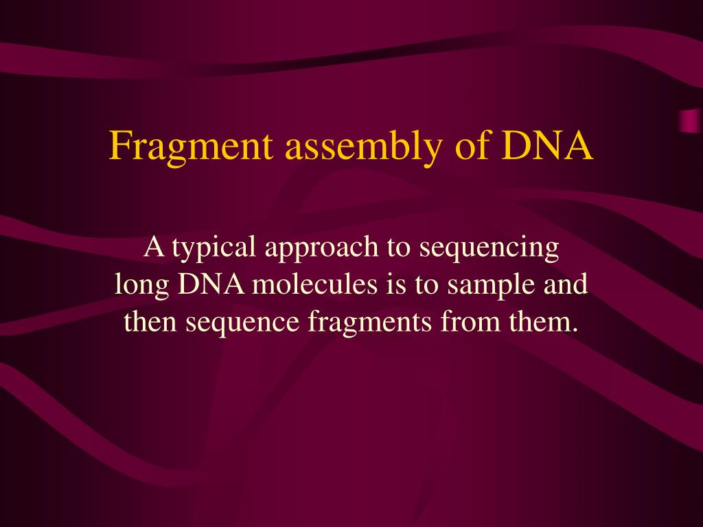 fragment assembly of dna l.