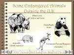 some endangered animals outside the u s