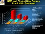 bmd and clinical risk factors predict hip fractures