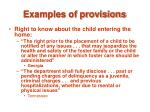 examples of provisions20