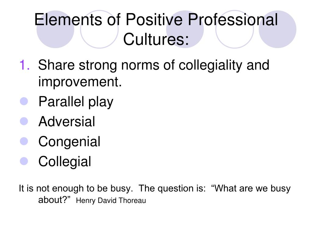 Elements of Positive Professional Cultures: