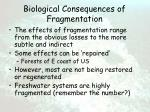 biological consequences of fragmentation