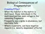 biological consequences of fragmentation57