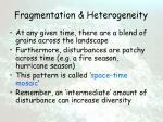 fragmentation heterogeneity10
