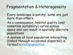 fragmentation heterogeneity11