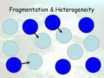 fragmentation heterogeneity15