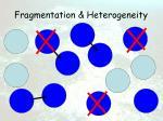 fragmentation heterogeneity16