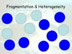 fragmentation heterogeneity34