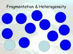 fragmentation heterogeneity35