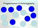 fragmentation heterogeneity36