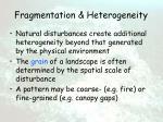 fragmentation heterogeneity9