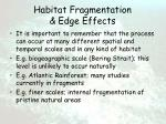 habitat fragmentation edge effects53