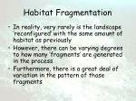 habitat fragmentation2