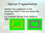 habitat fragmentation3