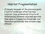 habitat fragmentation42