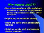 why inspect labs