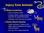 injury from animals