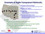 example of agile transparent networks