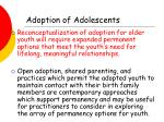 adoption of adolescents22