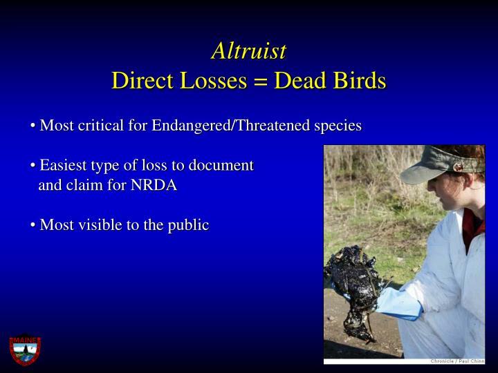 Altruist direct losses dead birds