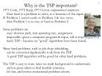 why is the tsp important