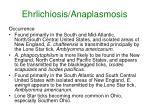 ehrlichiosis anaplasmosis35