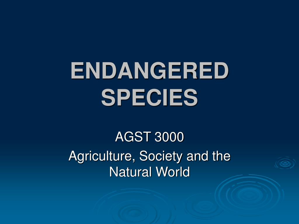 endangered species l.