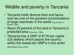 wildlife and poverty in tanzania
