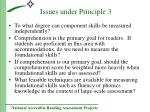 issues under principle 3