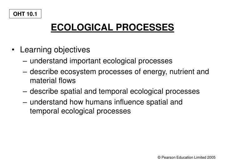 ecological processes n.