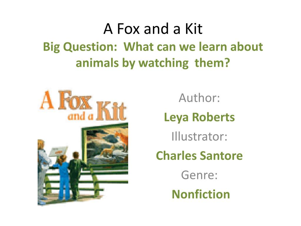 a fox and a kit big question what can we learn about animals by watching them l.