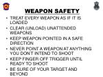 weapon safety8