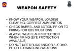 weapon safety9