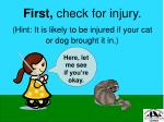 first check for injury hint it is likely to be injured if your cat or dog brought it in
