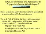 what are the needs and approaches to engage to minimize wildlife impact23