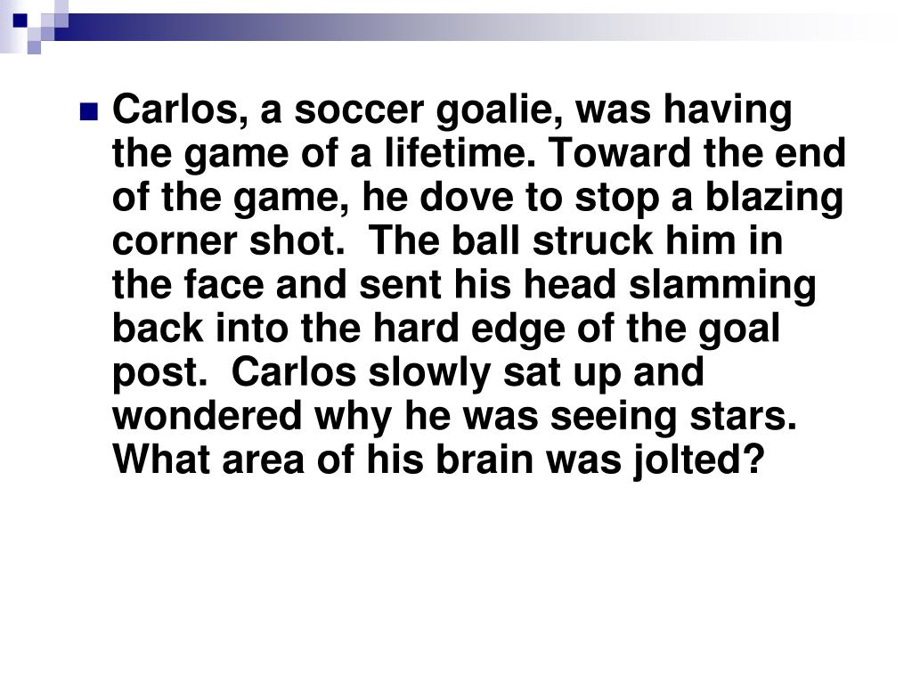 Carlos, a soccer goalie, was having the game of a lifetime. Toward the end of the game, he dove to stop a blazing corner shot.  The ball struck him in the face and sent his head slamming back into the hard edge of the goal post.  Carlos slowly sat up and wondered why he was seeing stars. What area of his brain was jolted?