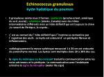 echinococcus granulosus kyste hydatique du poumon