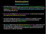 pneumocystose pneumocystis jiroveci24