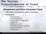 the various classifications of fraud20